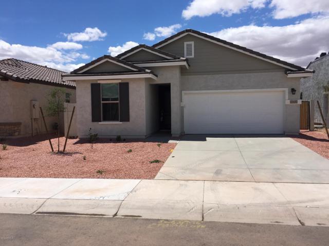 23132 N 126th Lane, Sun City West, AZ 85375 (MLS #5909214) :: Arizona 1 Real Estate Team