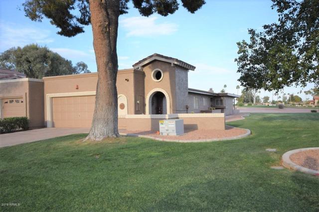 25217 S Berry Brook Drive, Sun Lakes, AZ 85248 (MLS #5909532) :: Yost Realty Group at RE/MAX Casa Grande