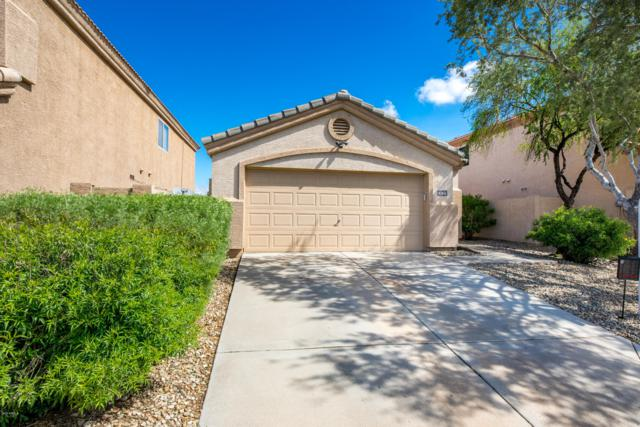 5124 E Roberta Drive, Cave Creek, AZ 85331 (MLS #5909540) :: My Home Group