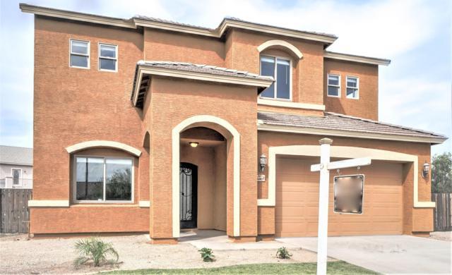 6407 S 50TH Drive, Laveen, AZ 85339 (MLS #5909861) :: Yost Realty Group at RE/MAX Casa Grande
