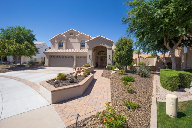 3120 W Ironwood Circle, Chandler, AZ 85226 (MLS #5909990) :: Riddle Realty