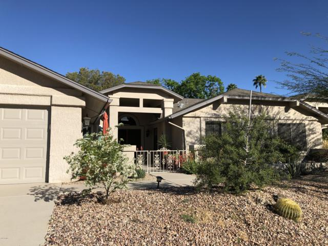 13710 W Greenview Drive, Sun City West, AZ 85375 (MLS #5910009) :: Riddle Realty