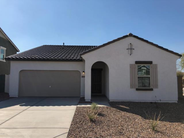 37132 W Capri Avenue, Maricopa, AZ 85138 (MLS #5910010) :: Openshaw Real Estate Group in partnership with The Jesse Herfel Real Estate Group