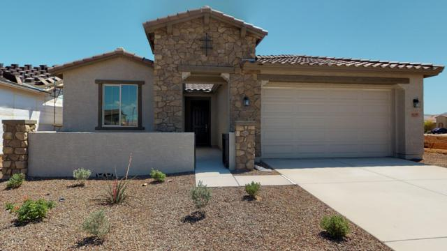 18245 W Via Montoya Drive, Surprise, AZ 85387 (MLS #5910696) :: Team Wilson Real Estate