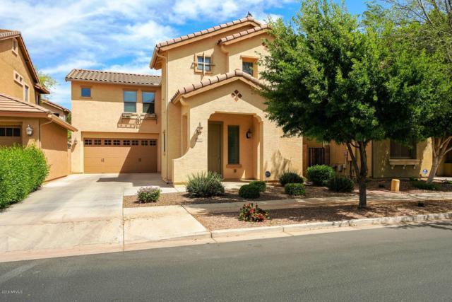 19162 E Kingbird Drive, Queen Creek, AZ 85142 (MLS #5910831) :: Yost Realty Group at RE/MAX Casa Grande