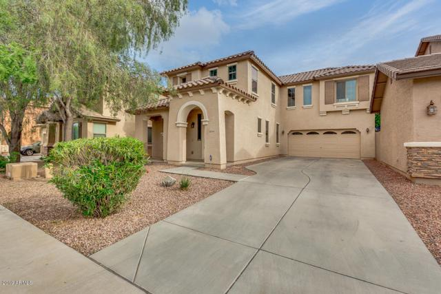15447 W Poinsettia Drive, Surprise, AZ 85379 (MLS #5910891) :: Yost Realty Group at RE/MAX Casa Grande