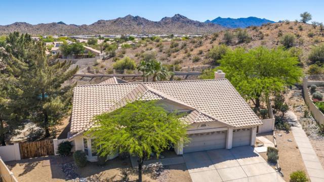 10755 S Morningside Drive, Goodyear, AZ 85338 (MLS #5911038) :: The Garcia Group