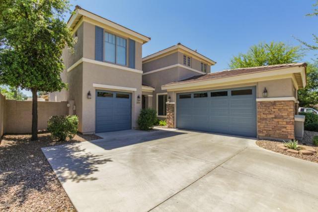 4773 E Lark Street, Gilbert, AZ 85297 (MLS #5911285) :: Riddle Realty