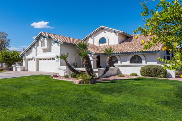 4022 E Hope Street, Mesa, AZ 85205 (MLS #5911570) :: Riddle Realty