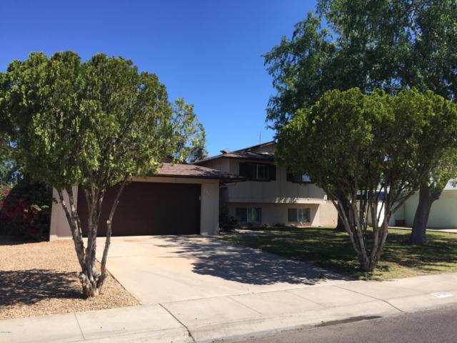 3438 W Crocus Drive, Phoenix, AZ 85053 (MLS #5911979) :: CC & Co. Real Estate Team