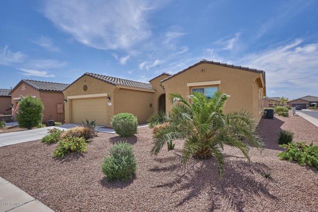 42981 W Sandpiper Drive, Maricopa, AZ 85138 (MLS #5912102) :: Yost Realty Group at RE/MAX Casa Grande