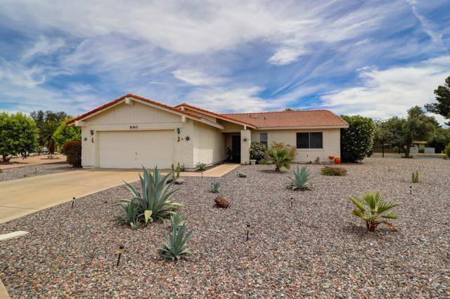 890 Leisure World, Mesa, AZ 85206 (MLS #5912459) :: Riddle Realty