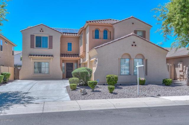 17775 W Crocus Drive, Surprise, AZ 85388 (MLS #5912695) :: Occasio Realty