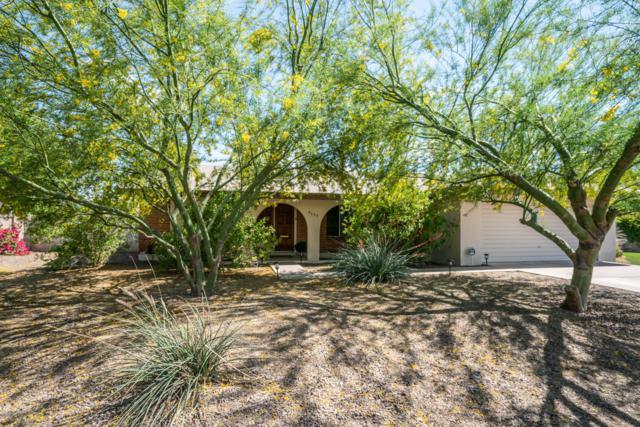 3633 S Hazelton Lane, Tempe, AZ 85282 (MLS #5913085) :: Yost Realty Group at RE/MAX Casa Grande