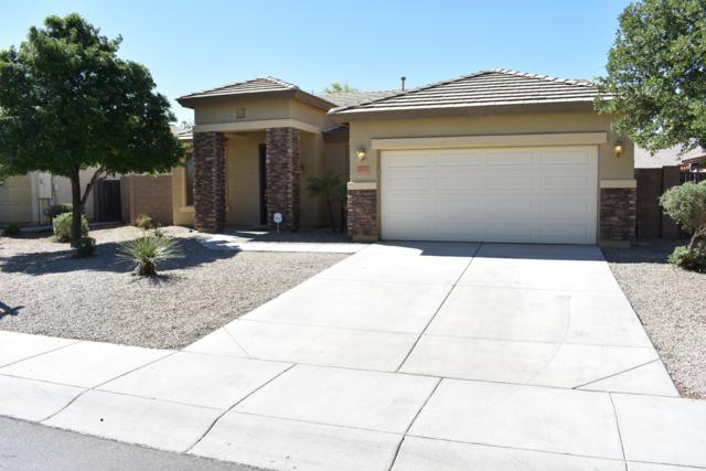 3015 E Andre Avenue, Gilbert, AZ 85298 (MLS #5913116) :: Yost Realty Group at RE/MAX Casa Grande
