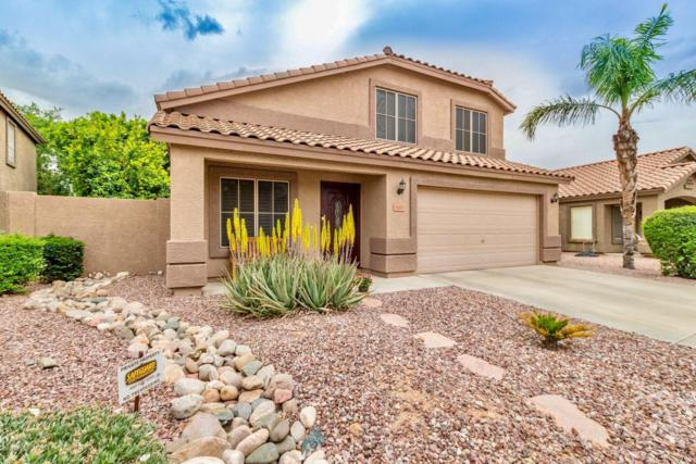 7177 W Mohawk Lane, Glendale, AZ 85308 (MLS #5913209) :: Riddle Realty