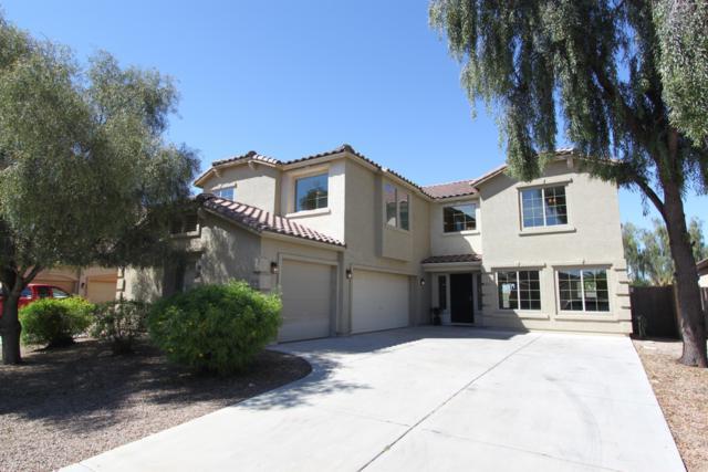 43606 W Wallner Drive, Maricopa, AZ 85138 (MLS #5913582) :: Yost Realty Group at RE/MAX Casa Grande