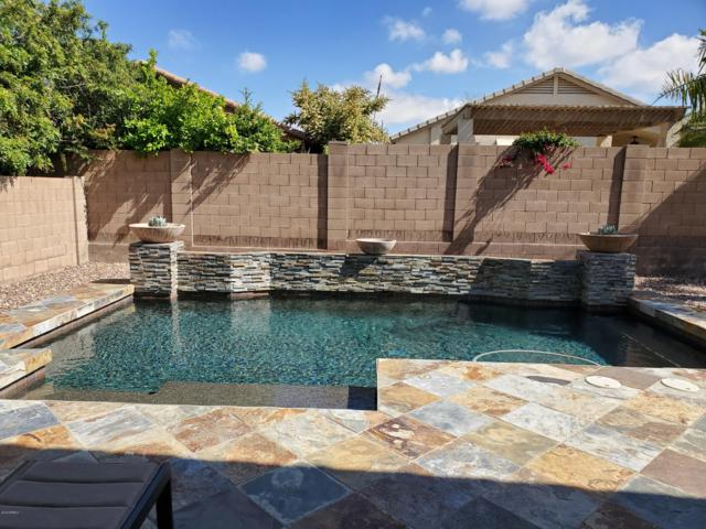 2322 W Hedgehog Place, Phoenix, AZ 85085 (MLS #5913583) :: Yost Realty Group at RE/MAX Casa Grande