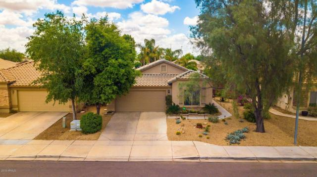 10853 E Wier Avenue, Mesa, AZ 85208 (MLS #5913602) :: Yost Realty Group at RE/MAX Casa Grande