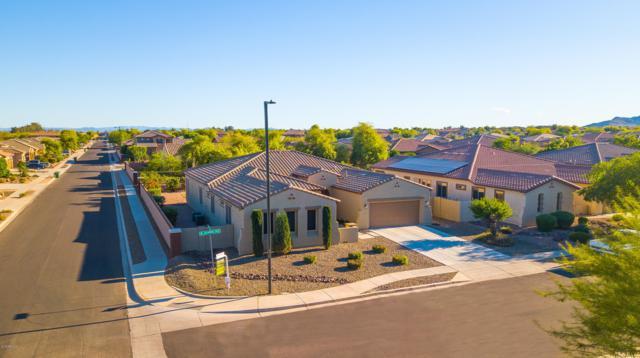 19139 W Georgia Avenue, Litchfield Park, AZ 85340 (MLS #5913658) :: Devor Real Estate Associates