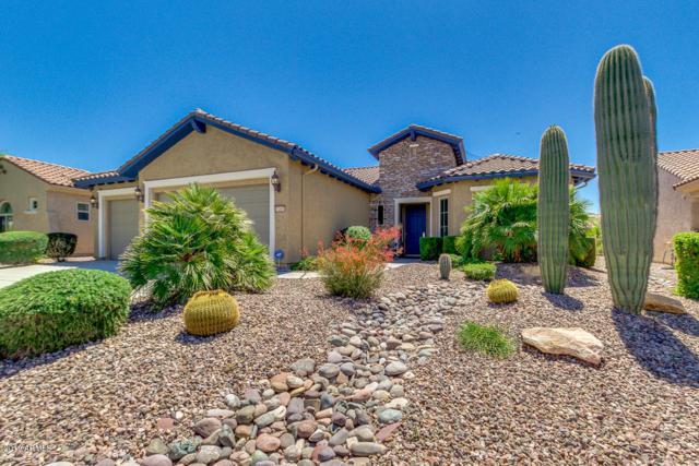 7203 W Trenton Way, Florence, AZ 85132 (MLS #5913703) :: Conway Real Estate