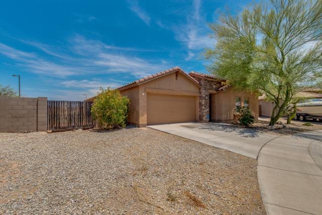 25295 W Heathermoor Drive, Buckeye, AZ 85326 (MLS #5913800) :: Riddle Realty