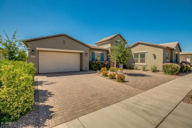 5442 S Chatsworth, Mesa, AZ 85212 (MLS #5913837) :: Riddle Realty