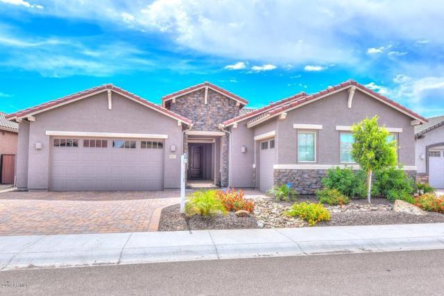 6611 W Side Canyon Trail, Phoenix, AZ 85083 (MLS #5914169) :: REMAX Professionals
