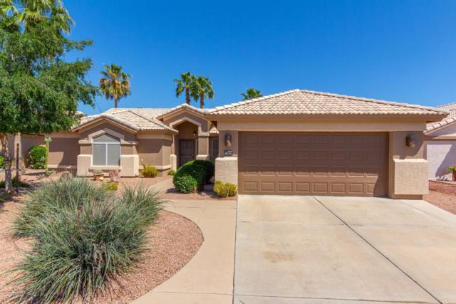 15826 W Amelia Drive, Goodyear, AZ 85395 (MLS #5914323) :: Occasio Realty