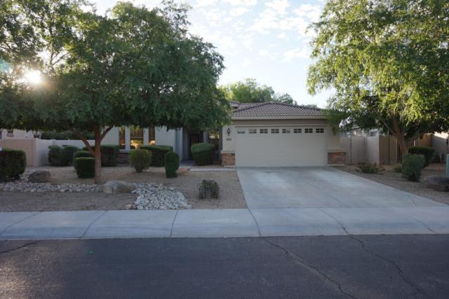 2853 S Buckskin Way, Chandler, AZ 85286 (MLS #5914398) :: The Bill and Cindy Flowers Team