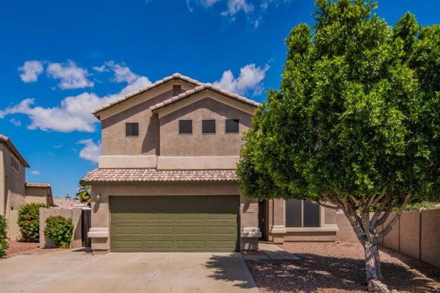 16215 N 162ND Drive, Surprise, AZ 85374 (MLS #5914458) :: Occasio Realty