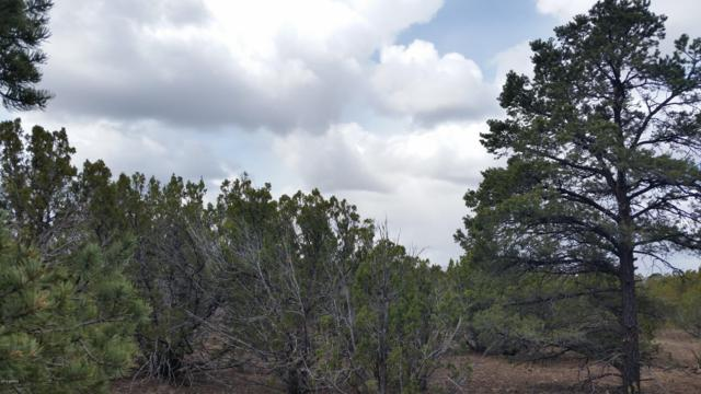 Lot 28 Uphill Trail, Vernon, AZ 85940 (MLS #5914656) :: Devor Real Estate Associates