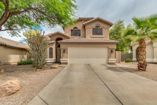 1105 S Honeysuckle Lane, Gilbert, AZ 85296 (MLS #5914668) :: Occasio Realty