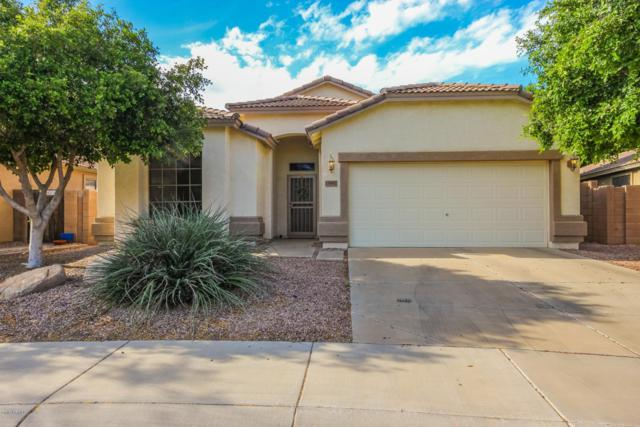 15992 W Ventura Street, Surprise, AZ 85379 (MLS #5914789) :: Lifestyle Partners Team
