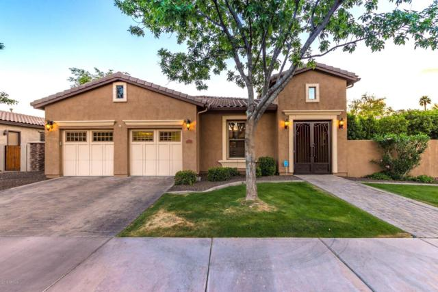7648 S La Corta Drive, Tempe, AZ 85284 (#5915142) :: Gateway Partners | Realty Executives Tucson Elite