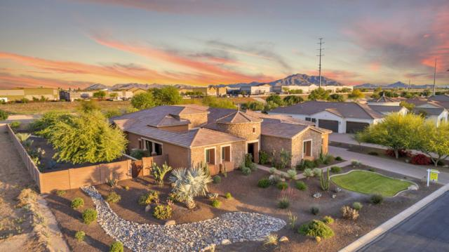 4509 S Banning Drive, Gilbert, AZ 85297 (#5915160) :: Gateway Partners | Realty Executives Tucson Elite