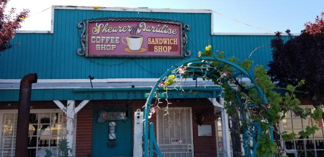 22522 S State Route 89, Yarnell, AZ 85362 (MLS #5915216) :: Brett Tanner Home Selling Team