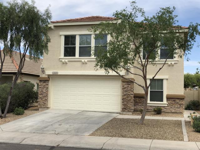 13428 W Berridge Lane, Litchfield Park, AZ 85340 (MLS #5915693) :: Phoenix Property Group