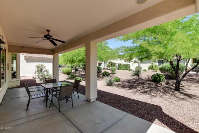 13662 W Figueroa Drive, Sun City West, AZ 85375 (MLS #5916531) :: Arizona 1 Real Estate Team