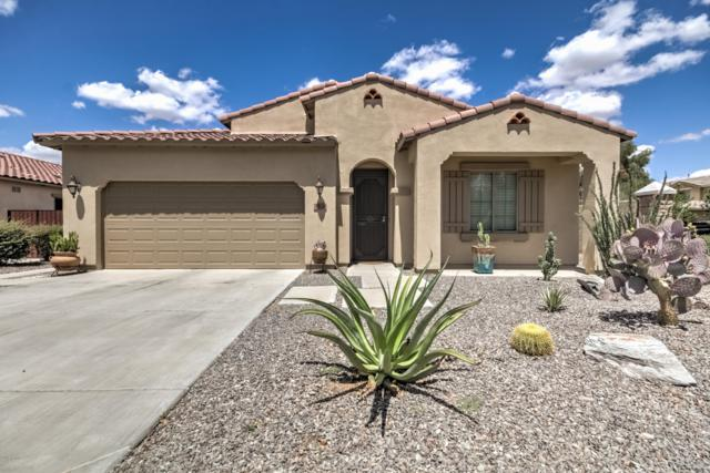 3520 E Lafayette Avenue, Gilbert, AZ 85298 (MLS #5917001) :: CC & Co. Real Estate Team