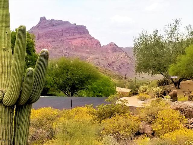 7139 E Summit Trail Street, Mesa, AZ 85207 (MLS #5917235) :: CC & Co. Real Estate Team