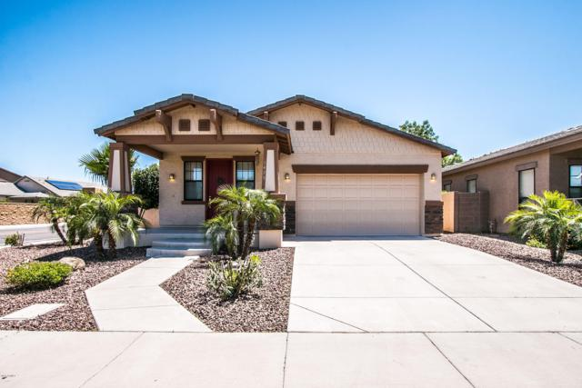 1475 W Homestead Court, Chandler, AZ 85286 (MLS #5917373) :: Arizona 1 Real Estate Team