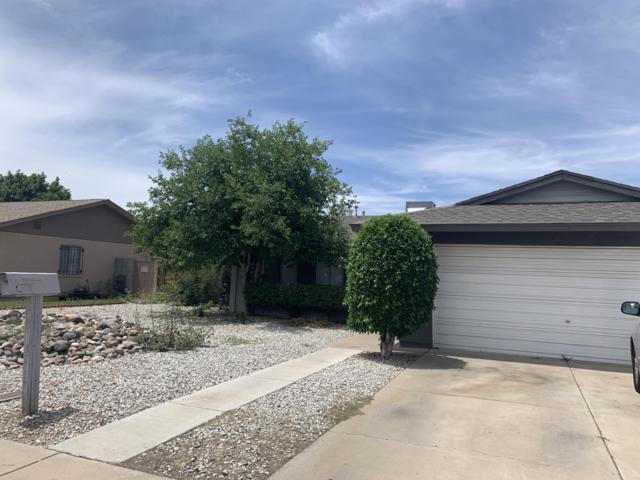 5614 N 46TH Drive, Glendale, AZ 85301 (MLS #5917634) :: Revelation Real Estate