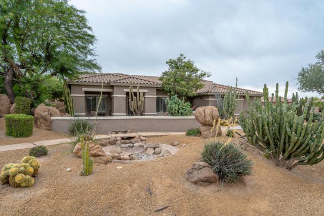 3017 N Mansfield Court, Litchfield Park, AZ 85340 (MLS #5918619) :: Team Wilson Real Estate