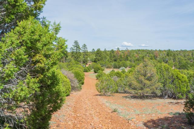 55 ACRES Twilight (No Address) Lane, Clay Springs, AZ 85923 (MLS #5918663) :: CC & Co. Real Estate Team