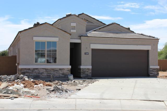 1269 E Paul Drive, Casa Grande, AZ 85122 (MLS #5918710) :: CC & Co. Real Estate Team
