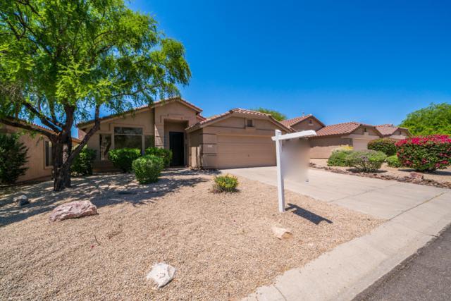 15710 N 104TH Street, Scottsdale, AZ 85255 (MLS #5918837) :: Riddle Realty