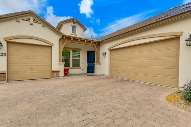 3831 E Powell Place, Chandler, AZ 85249 (MLS #5919563) :: The Kenny Klaus Team