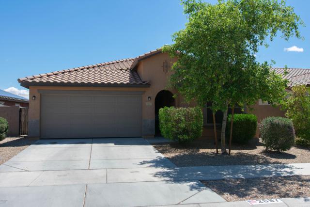 2687 S 171ST Lane, Goodyear, AZ 85338 (MLS #5919652) :: CC & Co. Real Estate Team