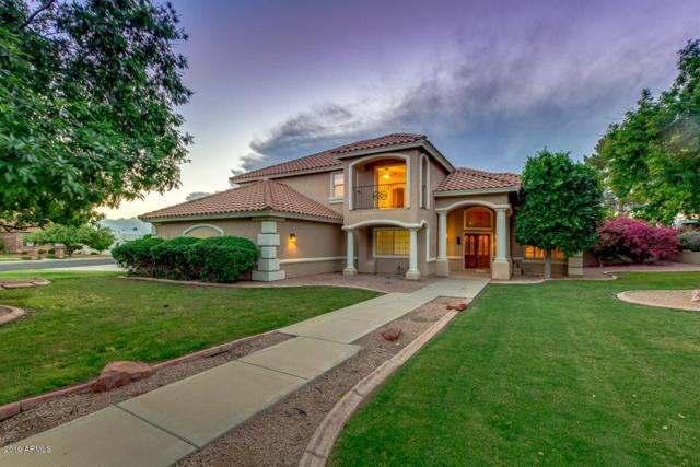 2438 N Forest Circle, Mesa, AZ 85203 (MLS #5920186) :: Occasio Realty